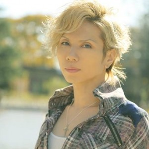 acid black cherry 2013