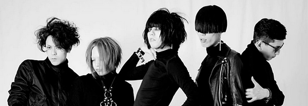 plastizooms band 2014