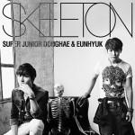 donghaeeunhyuk_skeleton_cd