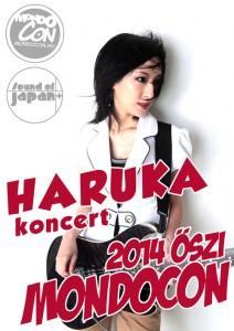 haruka2014