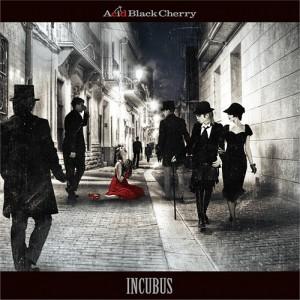 acidblack_incubus_dvd