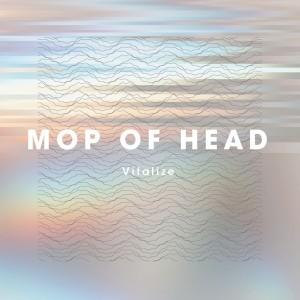 mopofhead_vitalize