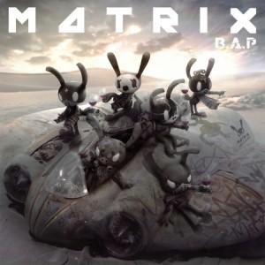 bap_matrix01