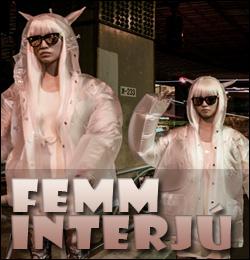 femm_interju_top